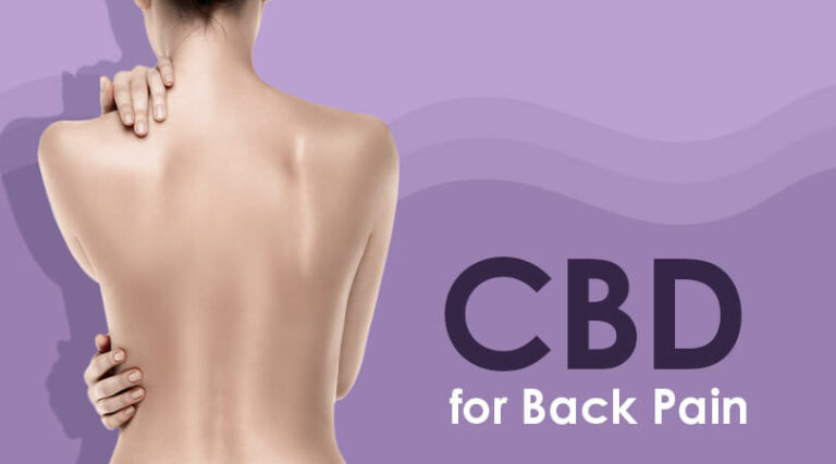 CBD and Back Pain Guide
