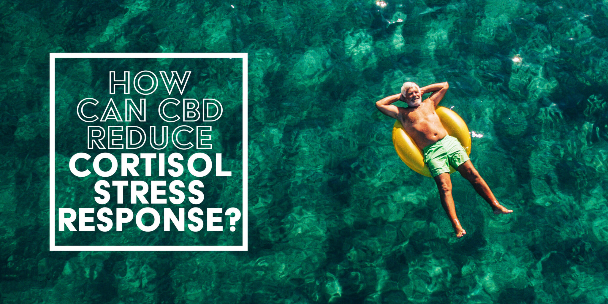 How Can CBD Reduce Cortisol Stress Response?